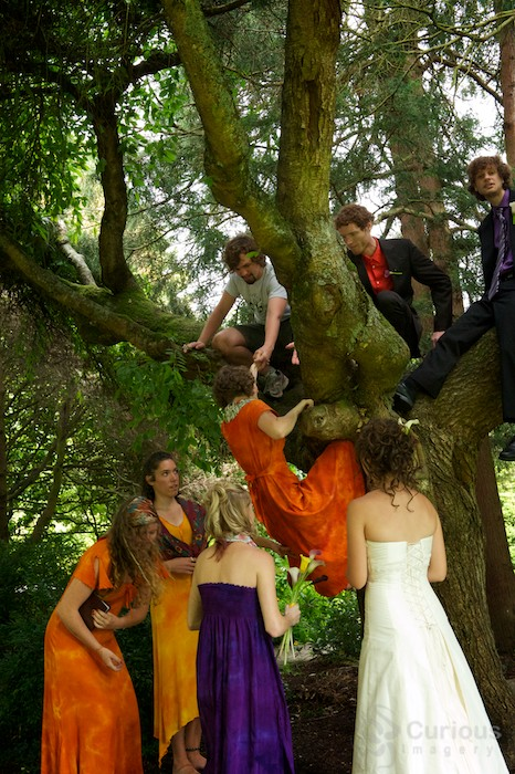 groomsmen helping bridesmaids climb into tree