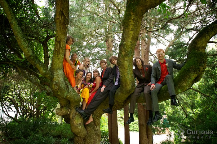 entire wedding party in a tree! awesome.