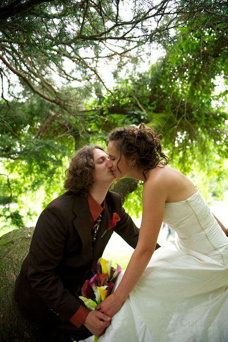 bride and groom kiss in tree
