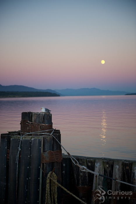 beautiful full moon setting over ocean by lummi island ferry dock